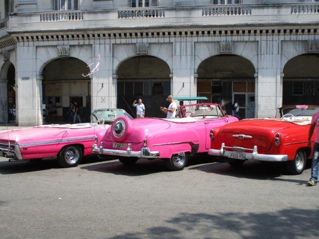 Nadine-pink10