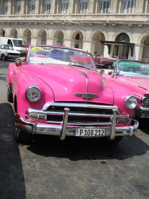 Nadine-pink11